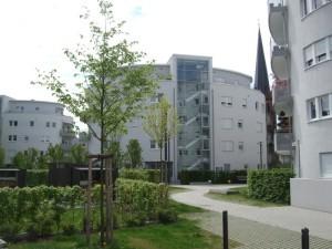 Parkanlage mit Gebäuden im Hintergrund